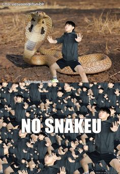 Shoo snakeu, go away!!! *You can hear jhope a scream from a far distance* NO SNAKEU NO