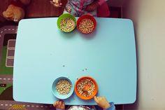 eu, ele, a maria e o miguel.: escola em casa: manhã de actividades simples.