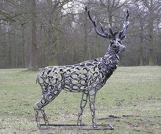 Horseshoe Deer