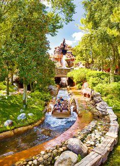 Splash Mountain in Walt Disney World