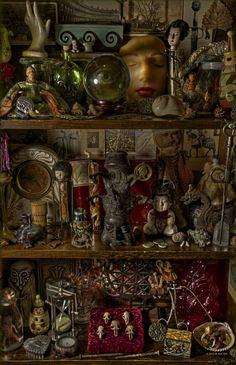 Curiosity shelves and oddities