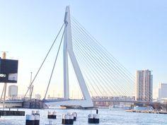 Rotterdam skyline, so pretty