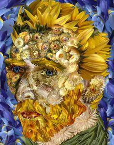 Sunflower Vincent