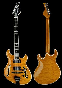Hollow Body Electric Guitars | languedocguitars.com
