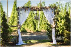 Kylie and Robby's wedding at Wilmes Hop Farms in Aurora, Oregon, photographed by Oregon Wedding Photographer Tekoa Rose Photography Salem Oregon, Willamette Valley, Gods Timing, Rose Photography, Marry Me, Event Venues, Farms, Kylie, Outdoor Structures