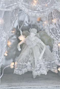 Lace/angel
