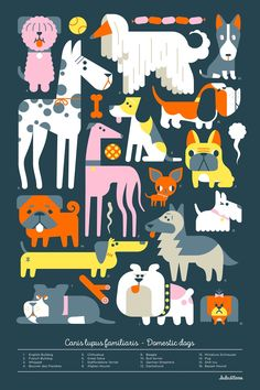 A beautiful way to teach our little ones about animals with these cute posters by the artists  Loulou and Tummie .