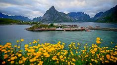 Image result for Reine Lofoten in Norway
