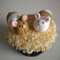 Image result for Hamster Cake Icing