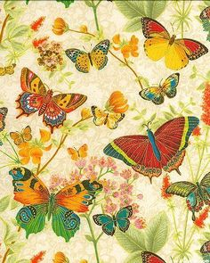 decoupage for girls Decoupage Vintage, Decoupage Paper, Vintage Paper, Butterfly Kisses, Butterfly Art, Butterfly Colors, Green Butterfly, Pattern Paper, Fabric Patterns
