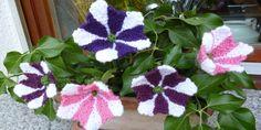 Der pflegeleichte Blumenkasten mit Blüten aus Wolle. Petunien Blüten häkeln.