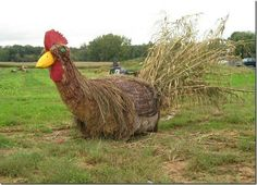 A rooster made out of a straw bale at Ashcome Farm and Greenhouse Straw Bales, Hay Bales, Garden Whimsy, Garden Art, Hay Bale Decorations, Fall Decorations, Bail Of Hay, Straw Bale Gardening, Farm Day
