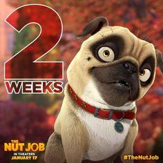 """Precious from """"The Nut Job"""" The Nut Job, Pugs, My Favorite Things, January, Movies, Jurassic Park, Films, Cinema, Movie"""