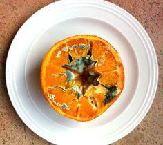 colour scheme of an orange plus mould