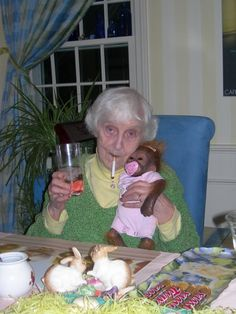 I don't know if it's the baby monkey with the pacifier, or gramma cheersing with a cup with the dentures in it, or the Twix Bars lined up or the fake bunnies, but this picture freaking rocks my socks.