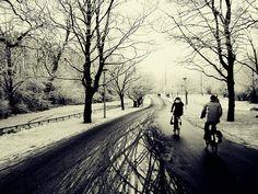 Vondelpark in the snow...