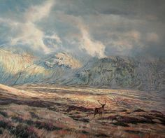 Red deer stag pictures - paintings and prints for sale