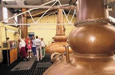 Bladnoch Distillery  8 miles from Wigtown is Scotland's most southerly whisky distillery, in the small village of Bladnoch. Now distilling again and offering guided tours, Visitor Centre and Gift Shop, and occasional whisky making courses.