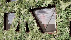 Europe's largest green wall will be on Citicape House in London