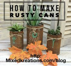 Rusty Tin Can Planters hydrogen peroxide and salt. Repeat til level of rustiness desired is reached