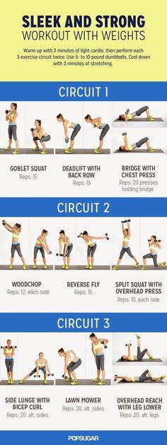 Get Sleek and Strong Workout With Weights   Medi Shortly