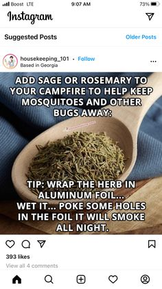 Great Recipes, Favorite Recipes, Delicious Deserts, Camping Meals, Pest Control, Homemaking, Home Remedies, Herbs, Fruit