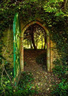 KeepStringLights: Forest Portal, Greatham, Hampshire, England, UK