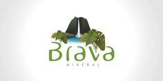 Diseño de logotipo para empresa embotelladora de agua mineral. (Venezuela)