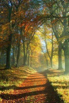 Pathway~~
