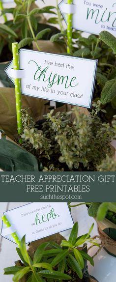 Fresh Potted Herbs ~ Teacher Appreciation Gift & Free Printable   SuchTheSpot.com #teacherappreciationgifts