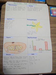 nonfiction text features...Love this project.  Very simple but gets the point across.