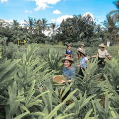 #Bali. We have a really fun time at Mekulicious Gathering at @DesaVisesa #Ubud. Slide the image and you can see we are picking up some vegetables for us to cook later and we also learn how to plan those and make organic fertilizer/compost  You can have th