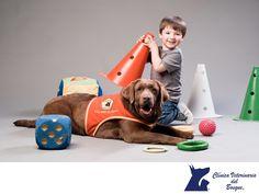 TIPS PARA MASCOTAS: Terapia asistida con perros. CLÍNICA VETERINARIA D...
