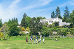 Football in the grounds at Brockhole, The Lake District Visitor Centre. Thanks to Thomas Beecham Photography for the photo.
