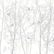Wall mural - January Magpie