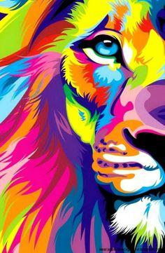 Lion ❤❤❤❤❤