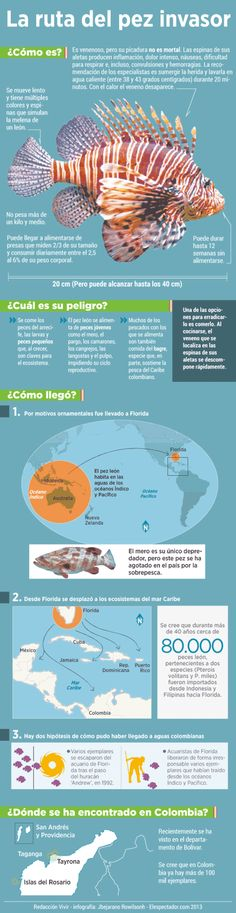 La ruta del pez Léon #infografia