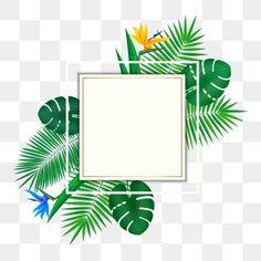 Autumn Leaves Background, Leaf Background, Painted Leaves, Hand Painted, Cartoon Leaf, Leaf Decoration, Vector Border, Summer Banner, Leaf Border