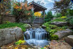 At NatureBuild we specialize in Natural Water features, Ponds, Timber pergolas, decks and bridges, stone and boulder work and landscape construction/design using natural materials. Outdoor Ponds, Ponds Backyard, Koi Ponds, Pond Landscaping, Landscaping With Rocks, Building A Pond, Natural Pond, Backyard Water Feature, Landscape Services