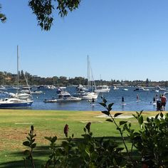 Freshwater Bay from Cappuccino by the River. Great spot. #Perth #perthcity #loveperth #food #coffee
