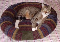 Upcycle an old sweater into a cozy bed for your furry friend.