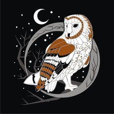Barn Owl by Mirveka on deviantART