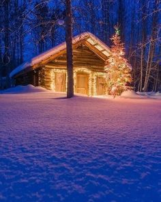 a-little-christmas-cabin-in-the-woods-is-all-we-need-20151220-10