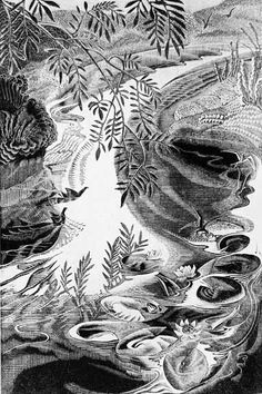 Gertrude Hermes (British, 1901-1983). Willows and waterlilies. 1931. (wood engraving)