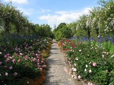 Mount Congreve Nursery & Gardens in Waterford