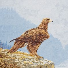 The Eye Of The Eagle - Cross Stitch Kit