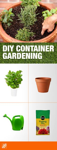 For beginning gardeners, the best way to start is with a small herb garden. Herbs tend to be among the easiest plants to grow and are a great addition to both your landscape and your table. Give your indoor and outdoor container plants the righ Indoor Vegetable Gardening, Garden Plants, Organic Gardening, Plants Indoor, Hanging Plants, House Plants, Shade Garden, Herb Garden Planter, Herb Plants