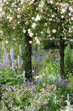 Flower garden with climbing roses