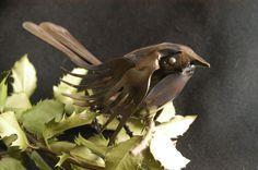 Homme Vert Mangeoire à oiseaux arbre Homme Jardin Forêt Mangeoire Oiseau bain Pagan Wiccan