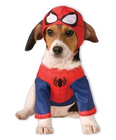 Spiderman Spider-Man Pet Outfit | zulily